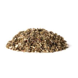 Mugwort (Artemisia vulgaris L.)