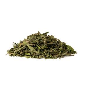 Tarragon (Artemisia dracunculus L.)